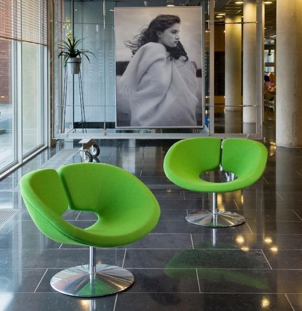 Apollo Lounge Chair