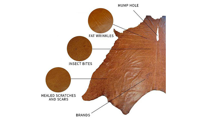 wrinkles bites scars on leather diagram
